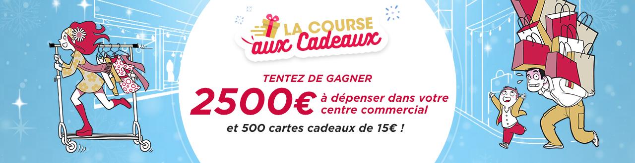 Centre Commercial Carrefour Lisle Dabeau